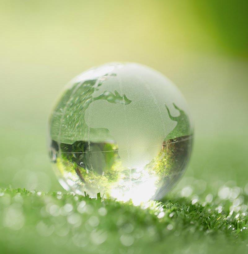 Habitat de Verde